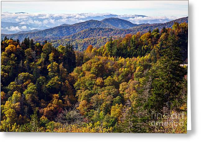 Smoky Mountain Color II Greeting Card by Douglas Stucky