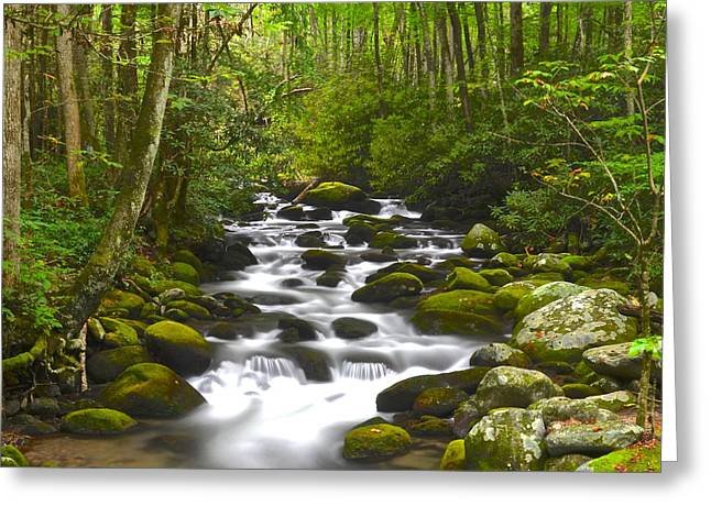 Smoky Mountain Stream Greeting Card by Frozen in Time Fine Art Photography