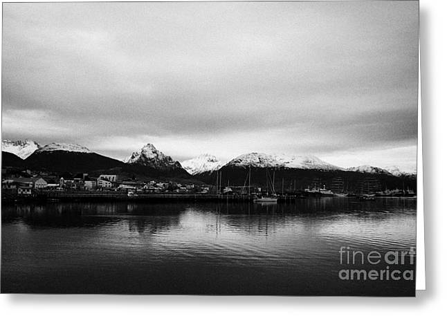 Snow-covered Landscape Greeting Cards - snow covered patagonian mountains from Ushuaia Argentina Greeting Card by Joe Fox