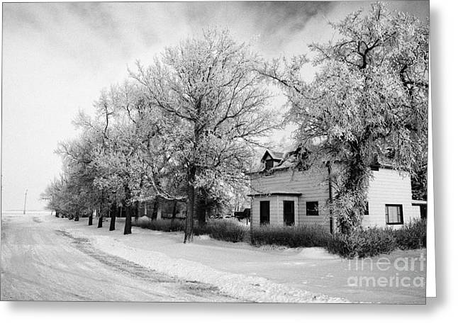 Snow Covered Village Greeting Cards - snow covered street in small rural farming community village Forget Saskatchewan Canada Greeting Card by Joe Fox