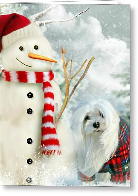 Maltese Mixed Media Greeting Cards - Snowdrop and The Snowman Greeting Card by Morag Bates