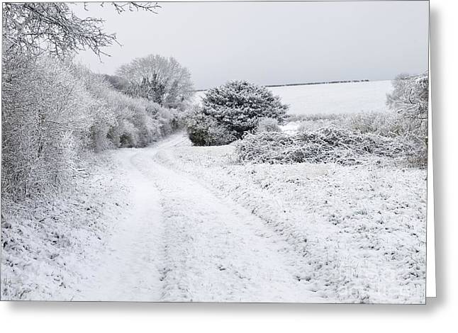 The Plateaus Greeting Cards - Snowy Landscape, Dorset Greeting Card by Adrian Bicker