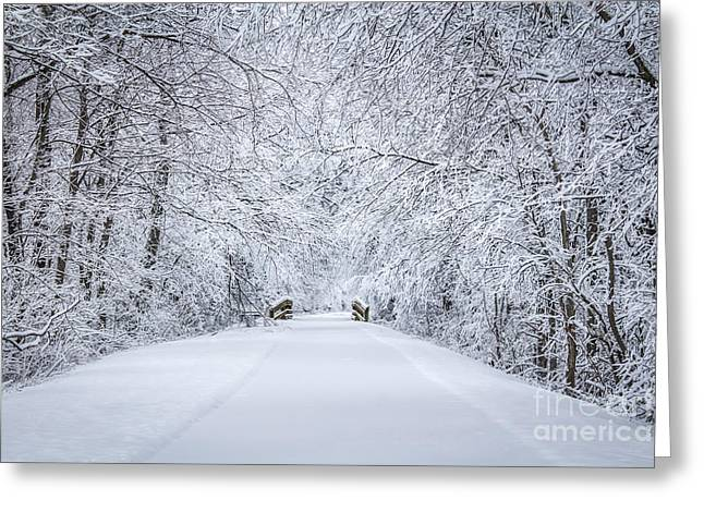 Snow On Trees Greeting Cards - Snowy Path Greeting Card by Dawn M Smith