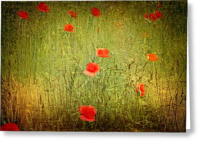 Canvas Framing Greeting Cards - Sommer Meadow Greeting Card by Heike Hultsch