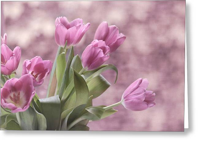 Lilac Tulip Flower Greeting Cards - Song of Spring Greeting Card by Kim Hojnacki