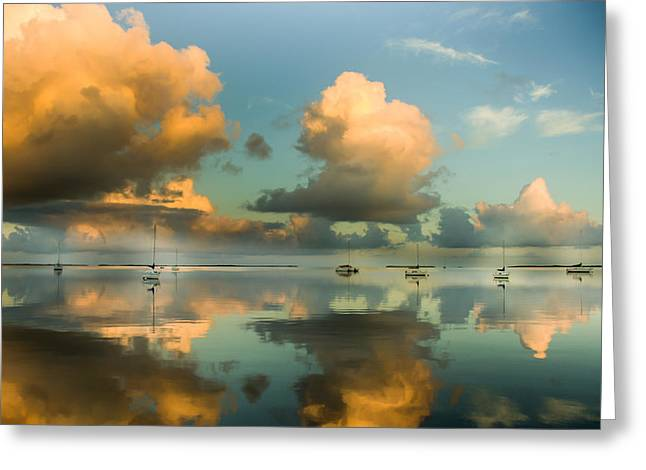 Sounds Of Silence Greeting Card by Karen Wiles