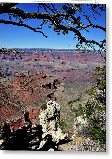 South Rim Of The Grand Canyon Greeting Card by Thomas R Fletcher