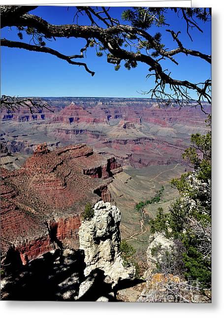 Thomas R. Fletcher Greeting Cards - South Rim of the Grand Canyon Greeting Card by Thomas R Fletcher