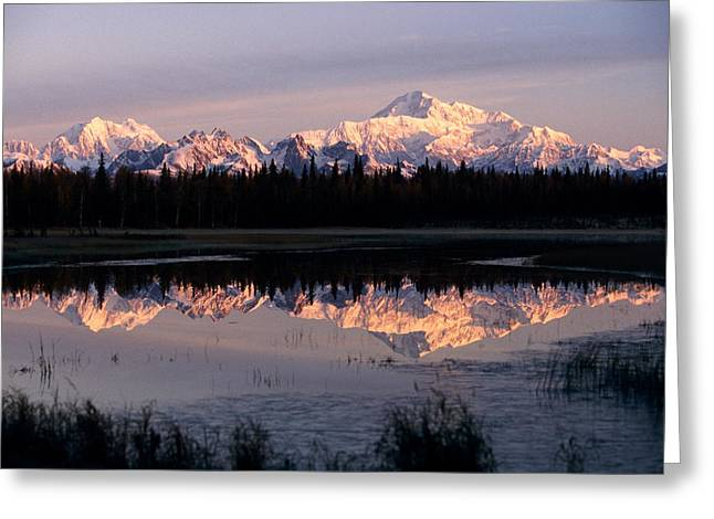 The Hills Greeting Cards - Southside Mt. Mckinley And Alaska Range Greeting Card by Jeff Schultz