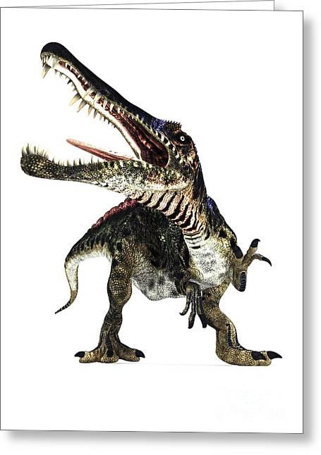 Northern Africa Greeting Cards - Spinosaurus Dinosaur, Artwork Greeting Card by Animate4.com Ltd.