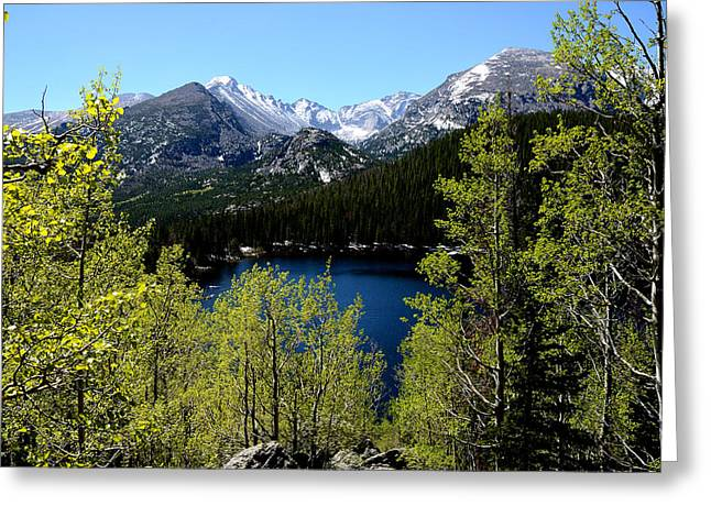 Gold Lime Green Greeting Cards - Spring at Bear Lake Greeting Card by Tranquil Light  Photography