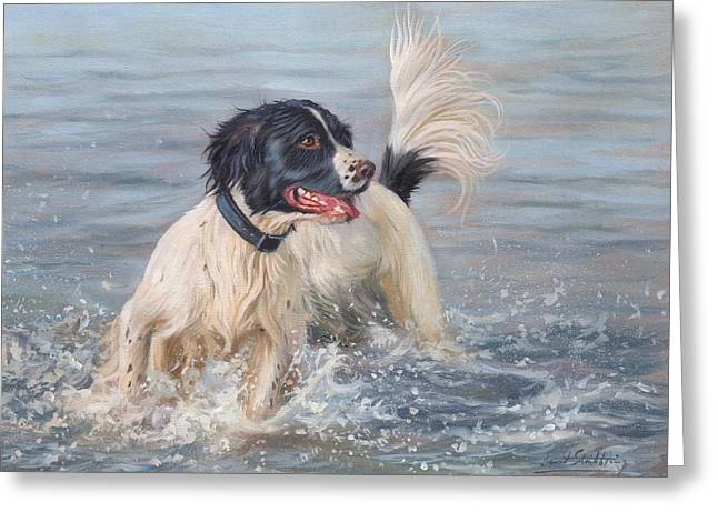Sea Dog Prints Greeting Cards - Springer Spaniel Greeting Card by David Stribbling