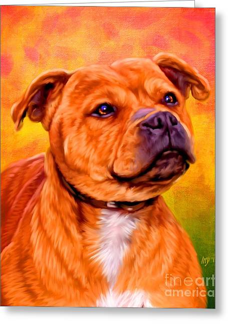 Staffie Greeting Cards - Staffie art Greeting Card by Iain McDonald