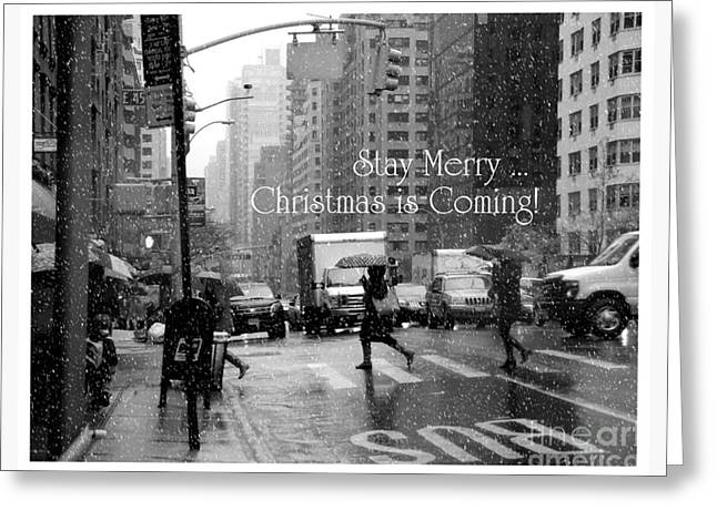 Workday Greeting Cards - Stay Merry - Christmas is Coming Greeting Card by Miriam Danar