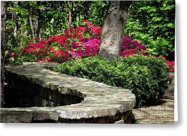 Red Azalias Greeting Cards - Stay on the Path Greeting Card by Nava  Thompson