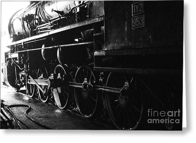 Coalmine Greeting Cards - Steam Train Greeting Card by Maja Sokolowska