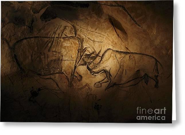 Stone-age Cave Paintings, Chauvet, France Greeting Card by Javier Trueba/msf