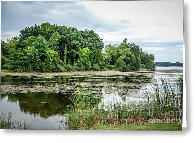 Stoney Creek Greeting Cards - Stoney Creek Lake Greeting Card by Grace Grogan