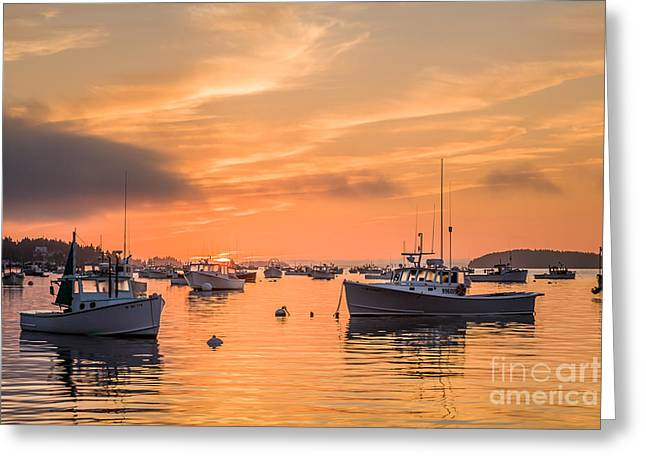 Recently Sold -  - Boats In Harbor Greeting Cards - Stonington Sunrise Greeting Card by Susan Cole Kelly