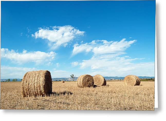 Hay Bales Pyrography Greeting Cards - Straw Bales at a Stubbel Field Greeting Card by Svetoslav Radkov