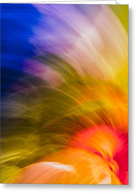 Abstract Movement Greeting Cards - Summer Bloom Greeting Card by Jon Glaser