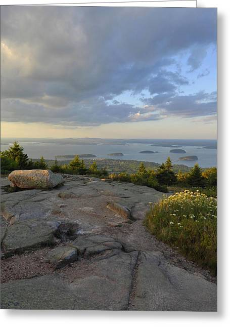 Down East Maine Greeting Cards - Summer Evening On Cadillac Mountain Greeting Card by Stephen  Vecchiotti
