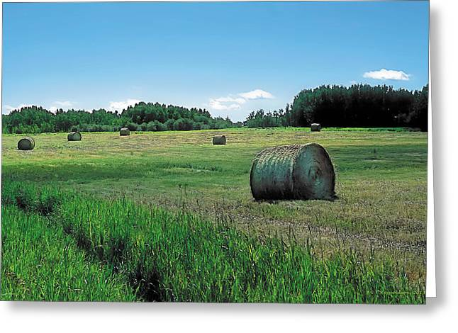 Crops Paintings Greeting Cards - Summer Hay 3 Greeting Card by Terry Reynoldson