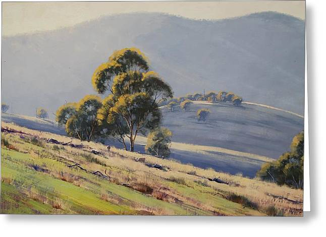 Eucalyptus Tree Greeting Cards - Summer Landscape Greeting Card by Graham Gercken