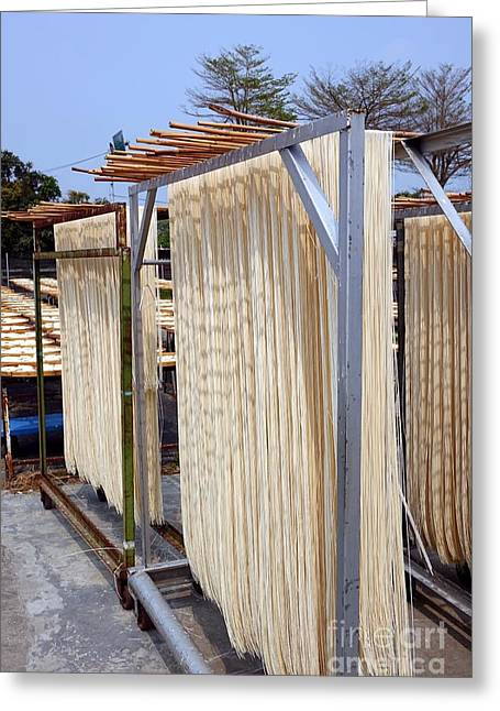 Drying Rack Greeting Cards - Sun Dried Noodles in Taiwan Greeting Card by Yali Shi
