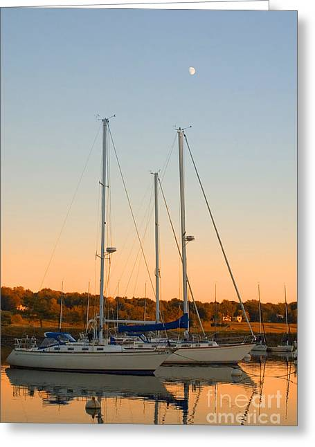 Sailboat Art Greeting Cards - Sunday Afternoon Greeting Card by Joann Vitali
