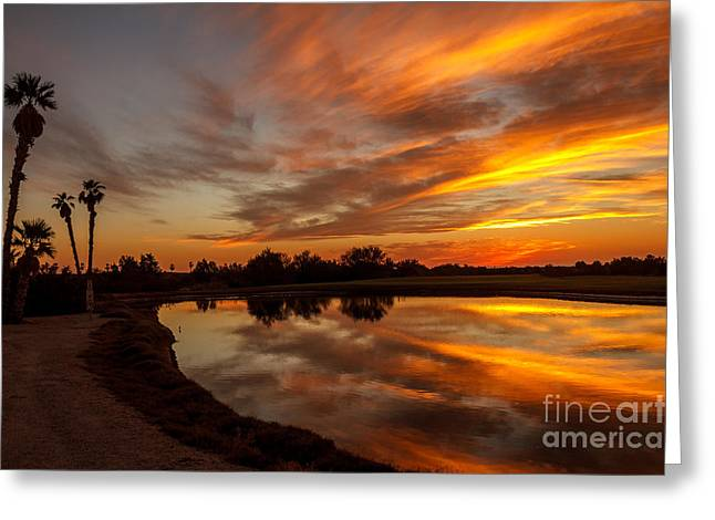 Wow Greeting Cards - Sunset Reflections Greeting Card by Robert Bales
