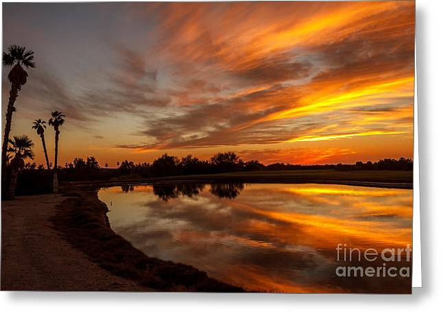Sunset Reflections Greeting Card by Robert Bales