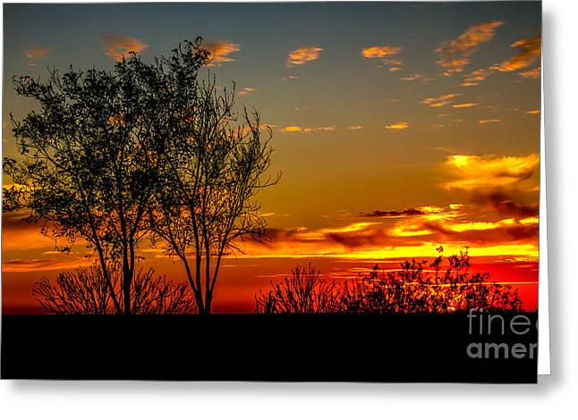 Haybale Greeting Cards - Sunset  Greeting Card by Robert Bales