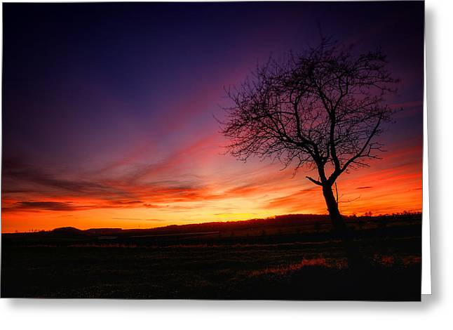 Himmel Greeting Cards - Sunset Greeting Card by Steffen Gierok