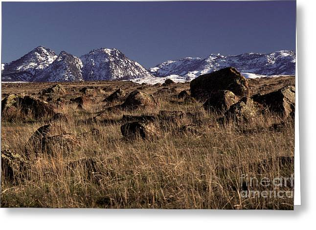 Snow-covered Landscape Greeting Cards - Sutter Butte Mountains Greeting Card by Ron Sanford