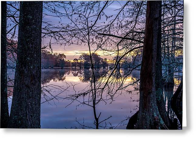 Parks And Wildlife Greeting Cards - Swamp Sunrise Greeting Card by David Morefield
