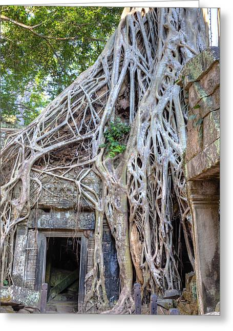 Ancient Ruins Greeting Cards - Ta Prohm Greeting Card by Alexey Stiop