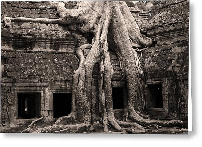 Ta Prohm Greeting Cards - Ta Prohm Temple in Cambodia Greeting Card by Artur Bogacki