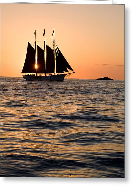 Historic Schooner Greeting Cards - Tall ship at sunset Greeting Card by Cliff Wassmann