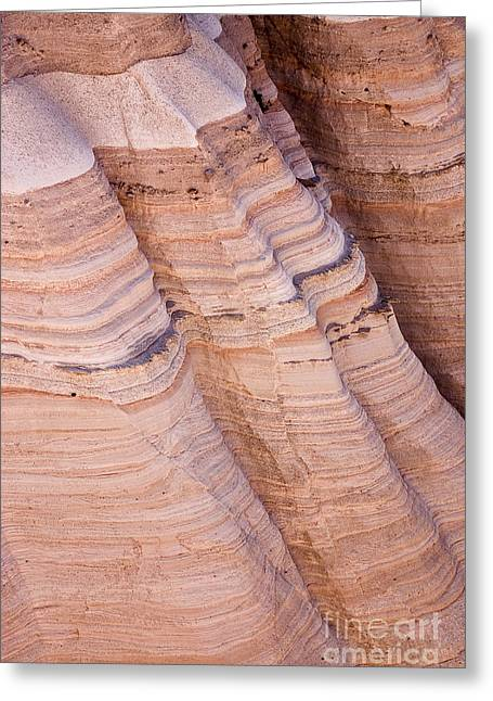 Tent Rocks Canyon Greeting Cards - Tent Rocks Greeting Card by Steven Ralser
