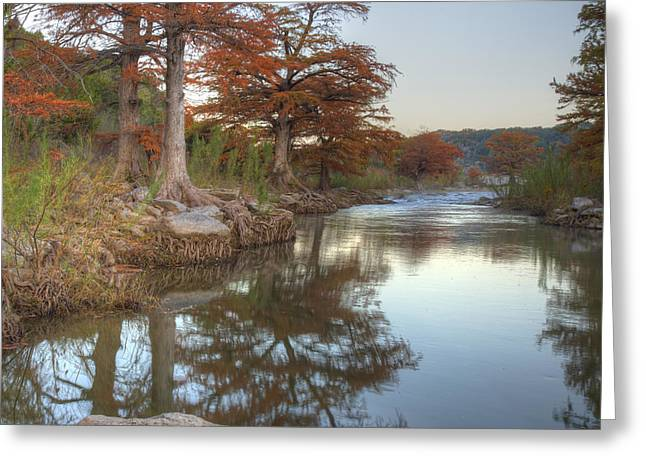 Photos Of Autumn Greeting Cards - Texas Hill Country Images - Cypress of Pedernales Falls State Pa Greeting Card by Rob Greebon