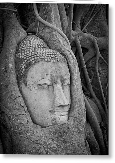 Traditional Art Sculptures Greeting Cards - The ancient city of Ayutthaya Greeting Card by Thosaporn Wintachai