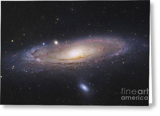 Constellations Photographs Greeting Cards - The Andromeda Galaxy Greeting Card by Robert Gendler