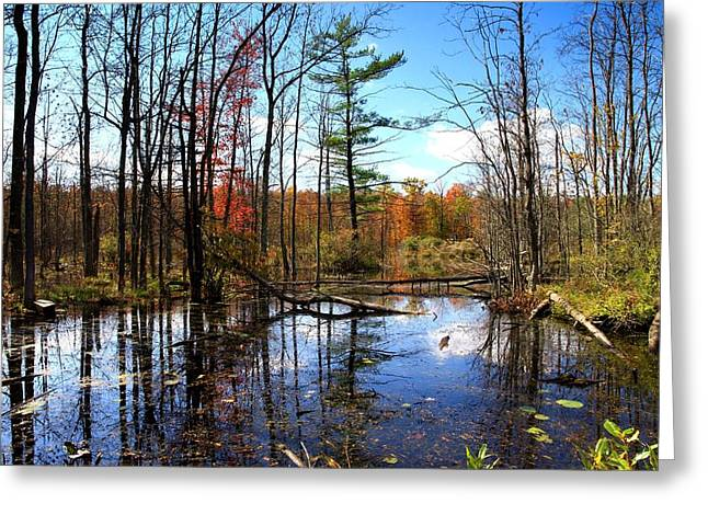 Clean Water Digital Art Greeting Cards - The beautiful fall Greeting Card by Paul Ge