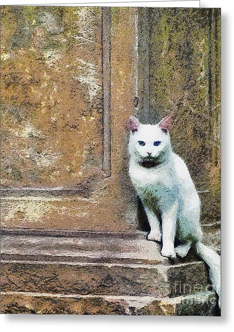 House Pet Greeting Cards - The cat Greeting Card by Odon Czintos