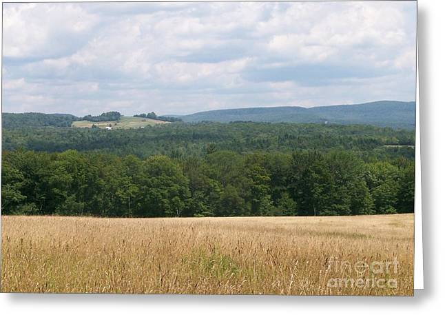 New York State; American Landscape; Rural; Countryside; New England; Church; Woodland; Trees; Hudson River School Greeting Cards - The Catskills Greeting Card by Kevin Croitz