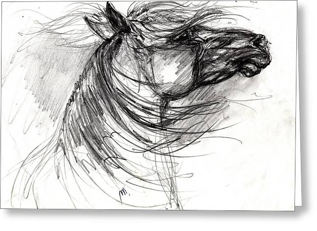Gray Horse Greeting Cards - The Horse Sketch Greeting Card by Angel  Tarantella