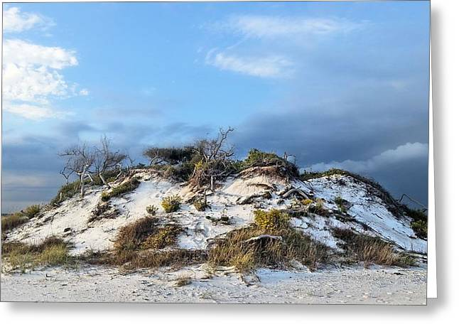 Florida Panhandle Greeting Cards - The Island Greeting Card by JC Findley