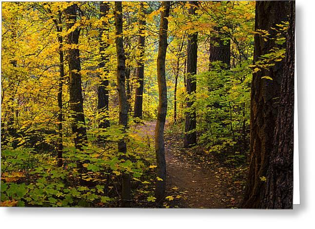 The Magic Forest  Greeting Card by Saija  Lehtonen