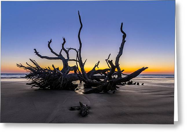Tropical Beach Greeting Cards - The Reach Greeting Card by Debra and Dave Vanderlaan